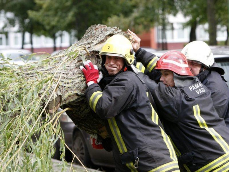 Dėl audros šeštadienį ugniagesiai šalinti nuvirtusių medžių vyko 33 kartus