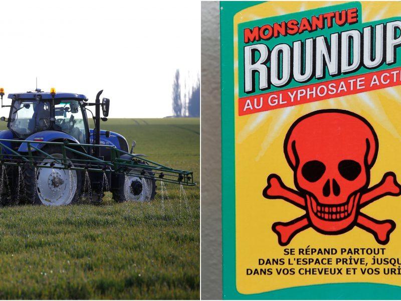 Penkiuose Prancūzijos miestuose uždrausti pesticidai: reikia saugoti bioįvairovę
