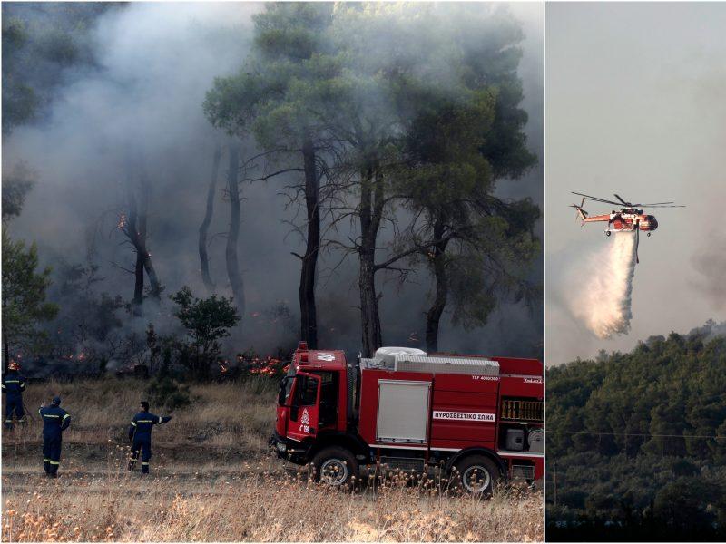 Graikijoje priešgaisriniai orlaiviai toliau gesina liepsnojančius miškus