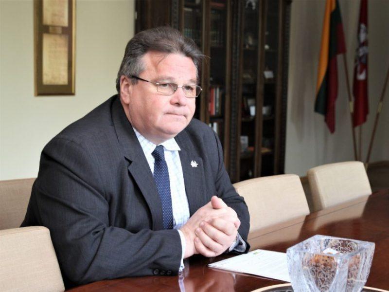 L. Linkevičius: NATO stiprybė – gebėjimas laiku reaguoti į iššūkius