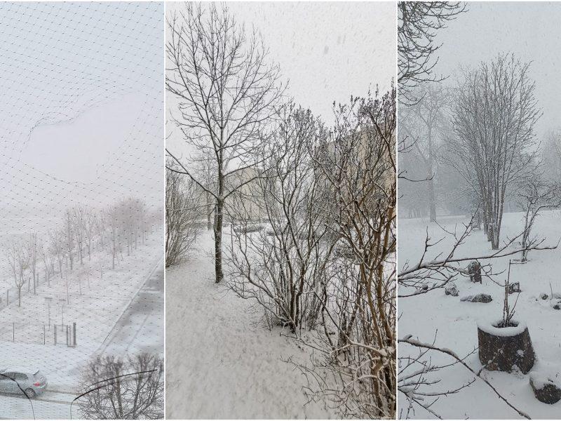 Kalendorinį pavasarį dar vejasi žiema: dalį Lietuvos užklojo sniegas