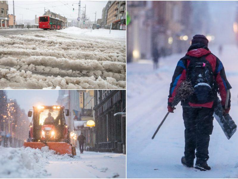Gausus sniegas jau pridarė žalos: be elektros liko apie 18 tūkst. namų ūkių, nuvirto dešimtys medžių