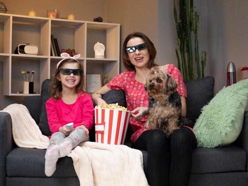 Ar šunys mato, ką rodo televizorius?