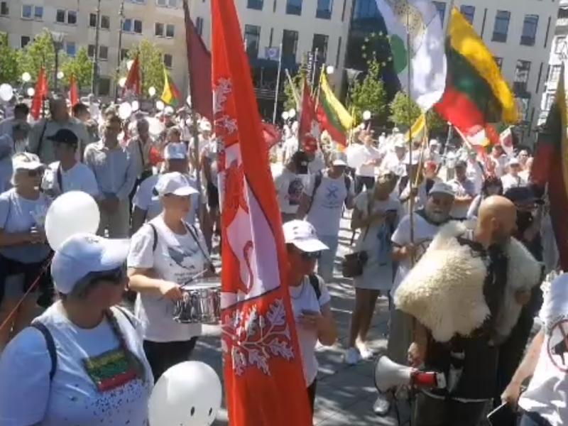 Prie Vyriausybės – incidentas dėl vėliavos: protestuotoją išsivežė policija