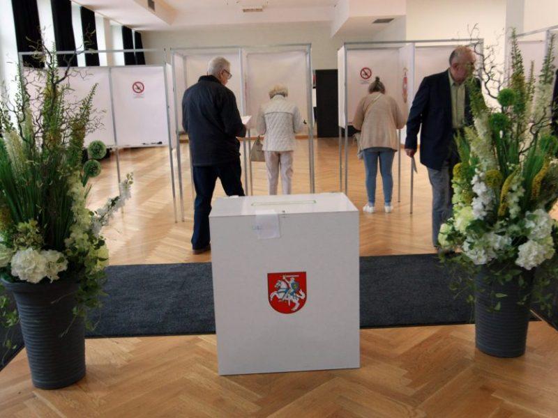 Rinkimų sistema – neteisinga ir brangi