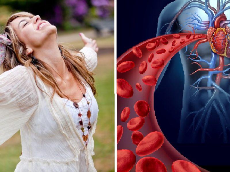 širdies sveikatos tikrintojas vaistas nuo hipertenzijos cardimap atsiliepimai