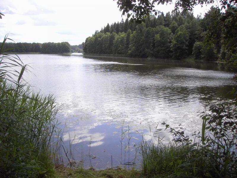 Ignalinos rajone ežere nuskendo nepilnametis