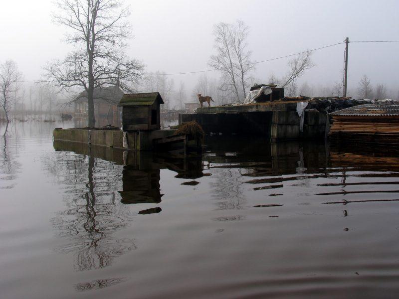Potvynis Rusnės apylinkėse pamažu slūgsta