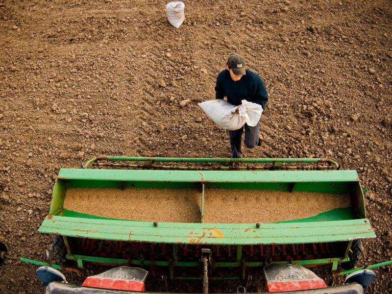 D. Grybauskaitė: Lietuvos žemdirbiai privalo gauti ES vidurkio išmokas