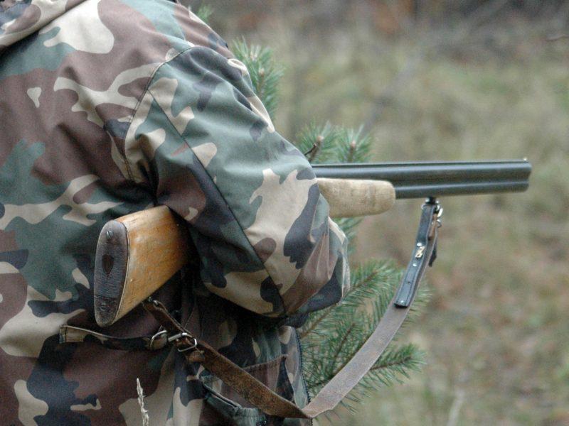 Vilniuje iš buto pavogtas šautuvas, šoviniai ir medžioklės įranga