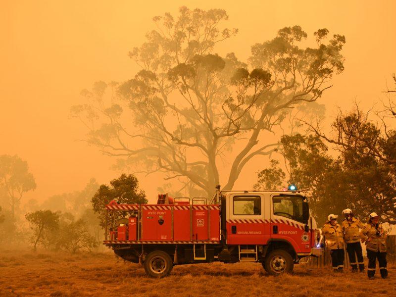 Australija nurodė atlikti tyrimą dėl milžiniškų krūmynų gaisrų