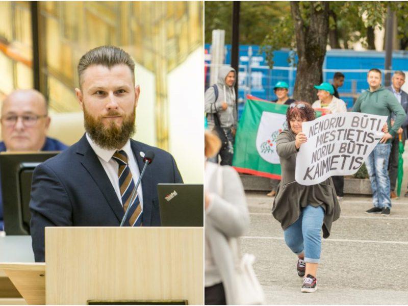 A. Palionis: Seimas gali siekti padėti Kauno rajono merui