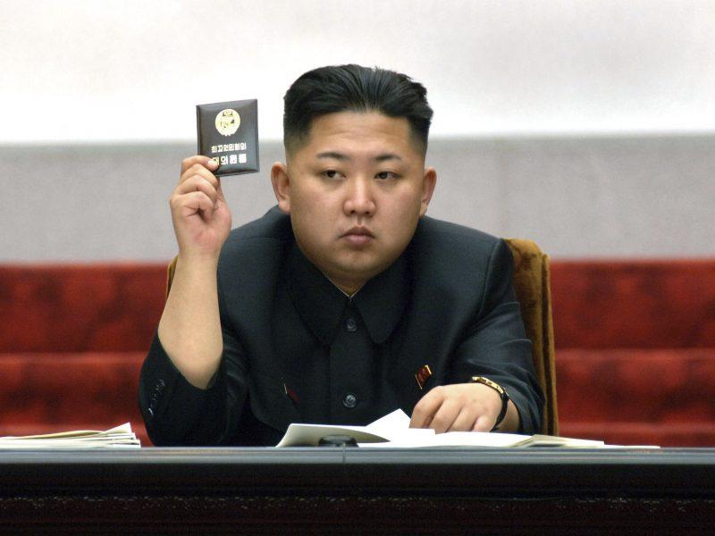 Paryžiuje Šiaurės Korėja paskelbė karą miškų naikinimui