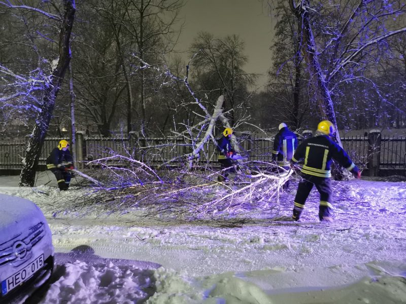 Pūga šalyje šėlsta: šimtai virtusių medžių, nepravažiuojami keliai, daugybė žmonių – be elektros
