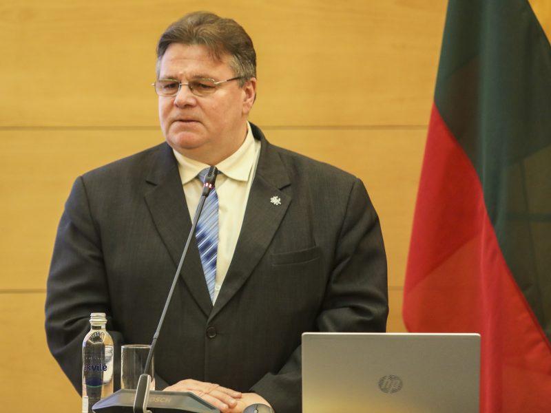 L. Linkevičius: Lietuva turi tapti ir gavėja ES inovacijų programoje