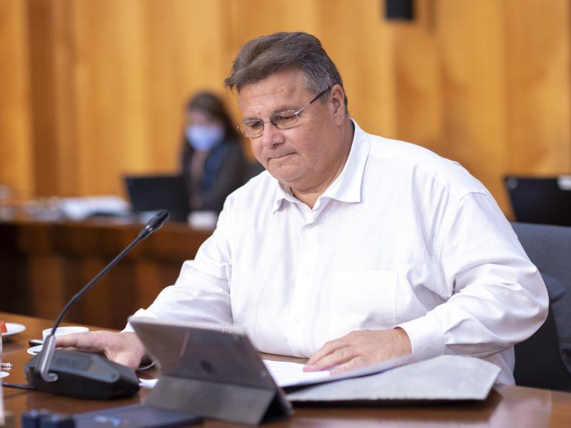 Ministras: nesutarimas dėl sankcijų Minskui pakerta demokratinių vertybių patikimumą