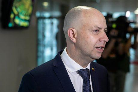 A. Veryga: norėčiau, kad premjeras S. Skvernelis vestų LVŽS sąrašą