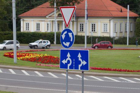 Sieks, kad želdiniai keliuose būtų finansuojami iš Kelių priežiūros programos