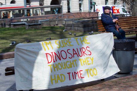 Per šimtą žmonių Vilniuje prisijungė prie tarptautinio protesto prieš klimato kaitą