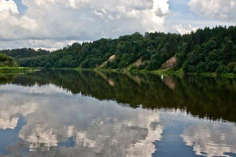 Nemune naikinamos kraujasiurbių upinių mašalų lervos