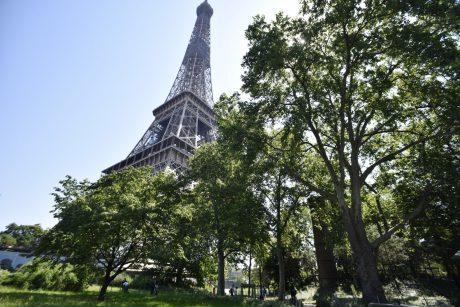 Kitą savaitę bus atidaromas viršutinis Eifelio bokšto aukštas