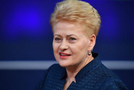 D. Grybauskaitė pasveikino V. Zelenskį su pergale