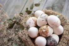 Geroji karantininių Velykų pusė – mažiau persivalgysime