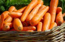Šventiniam desertui – morkų keksas <span style=color:red;>(receptas)</span>