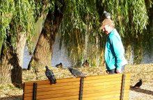 Neįtikėtinas vaizdelis: Kalniečių parke vyrui ant galvos nutūpė balandis <span style=color:red;>(nuotraukos)</span>